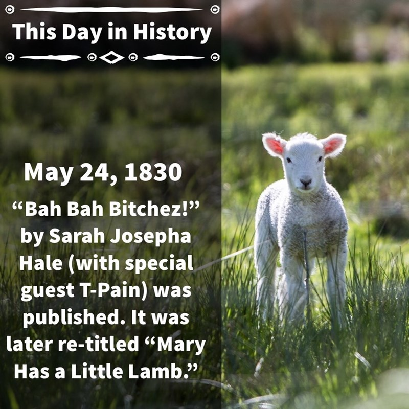 """Sheep - This Day in History May 24, 1830 """"Bah Bah Bitchez!"""" by Sarah Josep ha Hale (with special guest T-Pain) was published. It was later re-titled """"Mary Has a Little Lamb."""""""