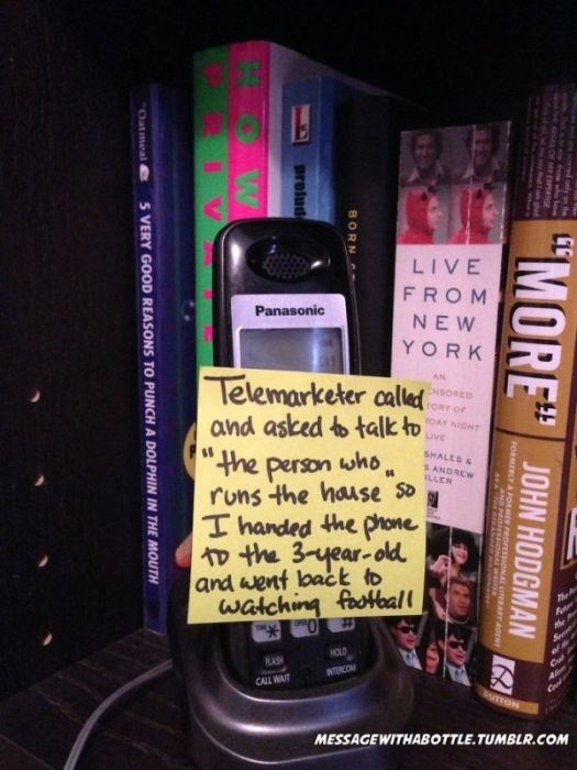 """Product - LIVE FROM Panasonic NEW YORK Telemarketer caled and asked b talk to """"the person who, runs the hause So T handed the phone D the 3-year-old and went lbact to walching fotball AN SORED rORY OF OAY NIGHT uVE SHALES& S ANDREW ILLER 7he he HOLD ASH INTERCOM CALL WAIT UTTON MESSAGEWITHABOTTLE.TUMBLR.COM """"MORE yn he JOHN HODGMAN EPEe ORMERLYA PORMER PROFESSIONAL ITERART ROINT AND P BORN prelud S VERY GOOD REASONS TO PUNCH A DOLPHIN IN THE MOUTH Oatmeal e"""