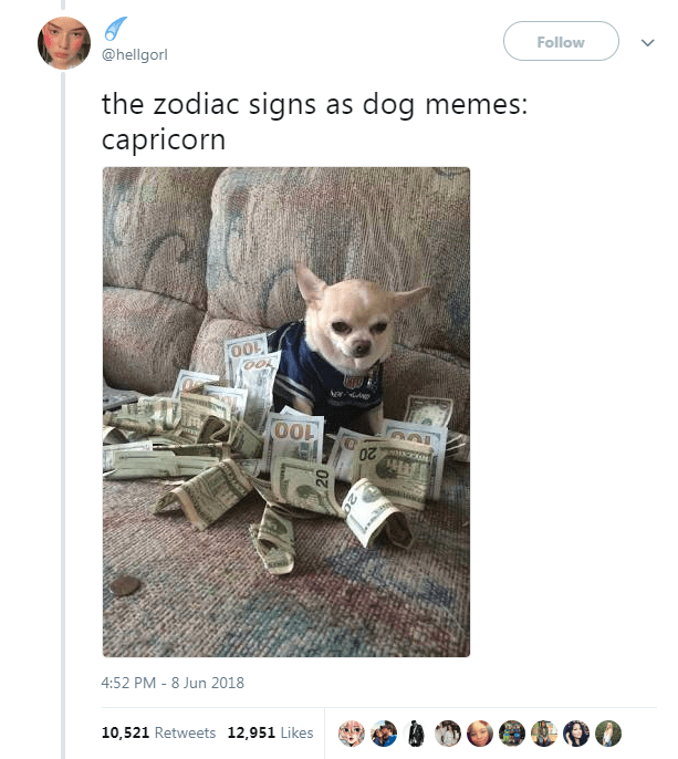 Dog Memes as Zodiac Signs - Dog as Capricorn and surrounded by cash