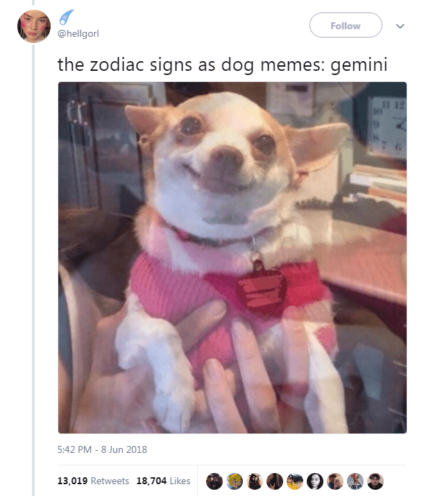 Dog Memes as Zodiac Signs - Dog as Gemini in a blurry image and smiling