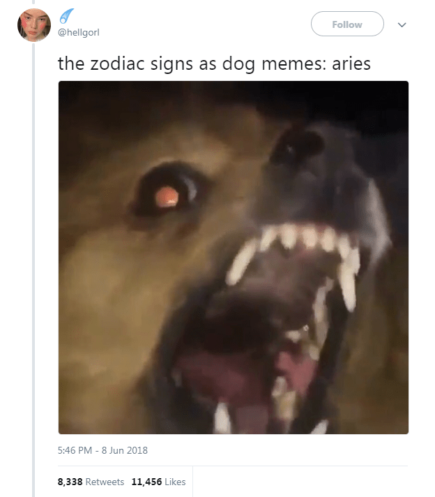 Dog Memes as Zodiac Signs - Dog as Aries and yelling