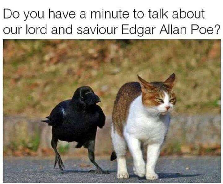 Cat - Do you have a minute to talk about our lord and saviour Edgar Allan Poe?