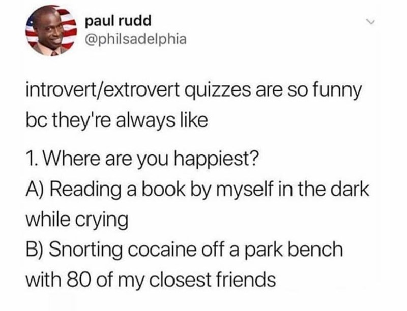 Text - paul rudd @philsadelphia introvert/extrovert quizzes are so funny bc they're always like 1. Where are you happiest? A) Reading a book by myself in the dark while crying B) Snorting cocaine off a park bench with 80 of my closest friends