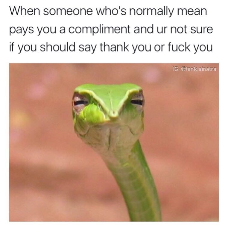 """""""When someone who's normally mean pays you a compliment and you're not sure if you should say thank you or fuck you"""""""