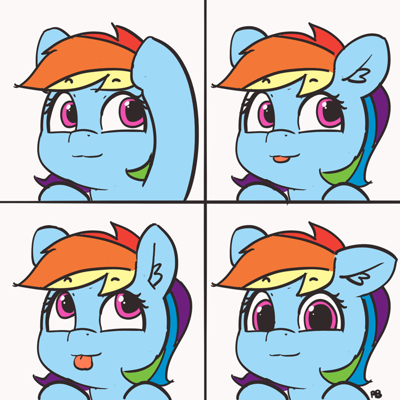 pabbley Memes loss rainbow dash - 9178448384