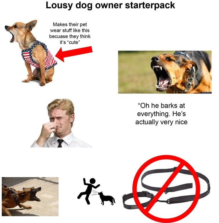 """Canidae - Lousy dog owner starterpack Makes their pet wear stuff like this becuase they think it's """"cute"""" """"Oh he barks at everything. He's actually very nice"""