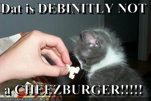 Dat is DEBINITLY NOT  a CHEEZBURGER!!!!!