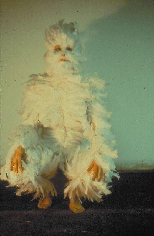 cursed_image - person covered in feathers