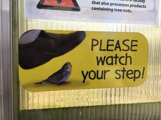 Footwear - that also processes products containing tree nuts. PLEASE watch your step!