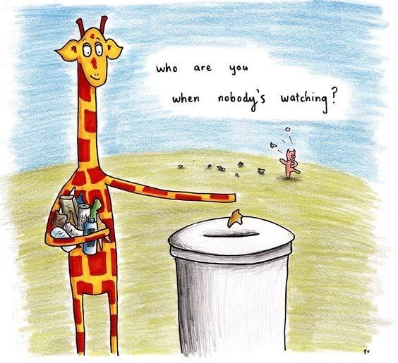 Giraffe - who are you naboda's wetehing when