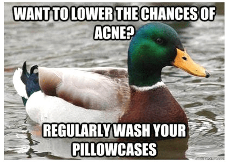 Bird - WANT TO LOWER THE CHANCES OF ACNE? REGULARLYWASH YOUR PILLOWCASES