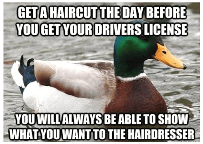 Duck - GETA HAIRCUT THE DAY BEFORE YOUGET YOUR DRIVERS LICENSE YOUWILLALWAYSBE ABLE TO SHOW WHAT YOUWANTTO THE HAIRDRESSER