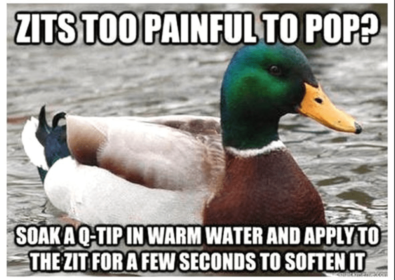 Bird - ZITS TOO PAINFUL TO POP? SOAKAQ-TIP IN WARM WATER AND APPLY TO THE ZIT FOR A FEW SECONDS TO SOFTEN IT