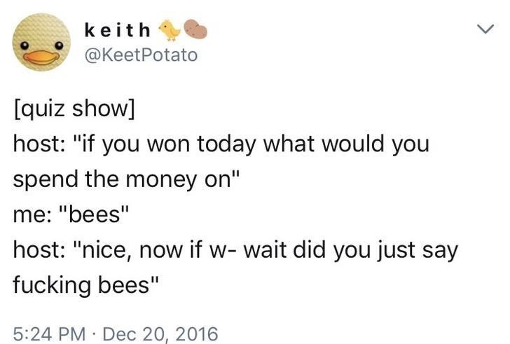 "Text - keith @KeetPotato [quiz show] host: ""if you won today what would you spend the money on"" me: ""bees"" host: ""nice, now if w- wait did you just say fucking bees"" 5:24 PM Dec 20, 2016"