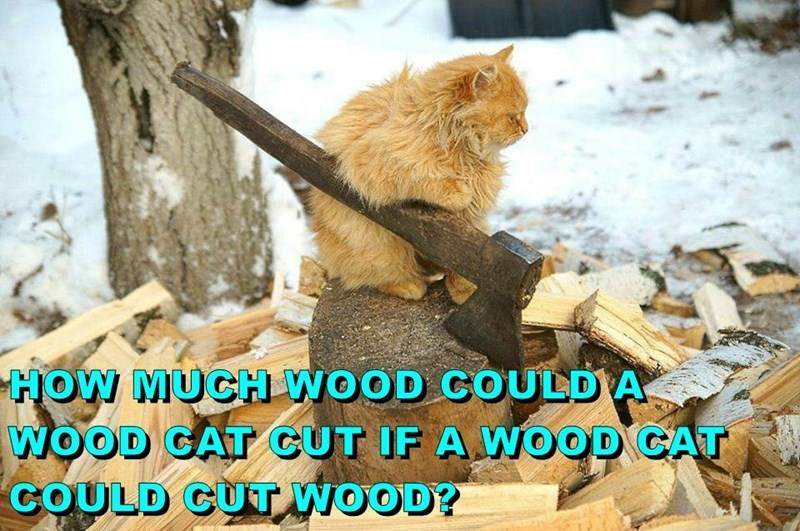 Adaptation - HOW MUCH WOOD COULDA WOOD GAT CUT IF A WOOD CAT COULD CUT WOOD?