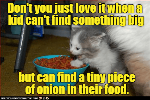Cat - Don't you just love it when a kid can't find something big but can find a tiny piece of onion in their food. ICANHASCHEE2EURGER cOM