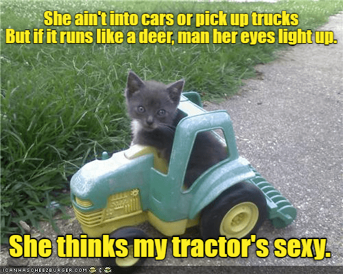 Cat - She ain't into cars or pick up trucks But if it runs like a deer, man her eyes light uD. She thinks my tractor's sexy. 1CANHASCHEE2EURGER cOM