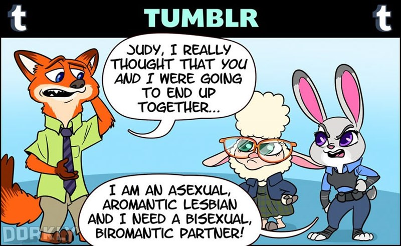 Cartoon - t t TUMBLR SUDY, I REALLY THOUGHT THAT YOu AND I WERE GOING TO END UP TOGETHER... I AM AN ASEXUAL AROMANTIC LESBIAN AND I NEED A BISEXUAL BIROMANTIC PARTNER! DORK