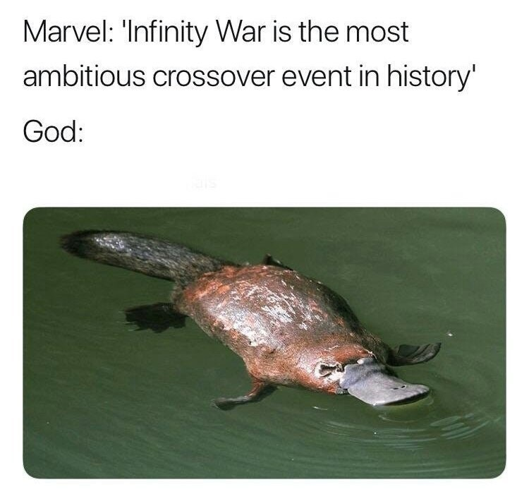 """Marvel: """"Infinity War is the most ambitious crossover event in history; God: created the platypus"""