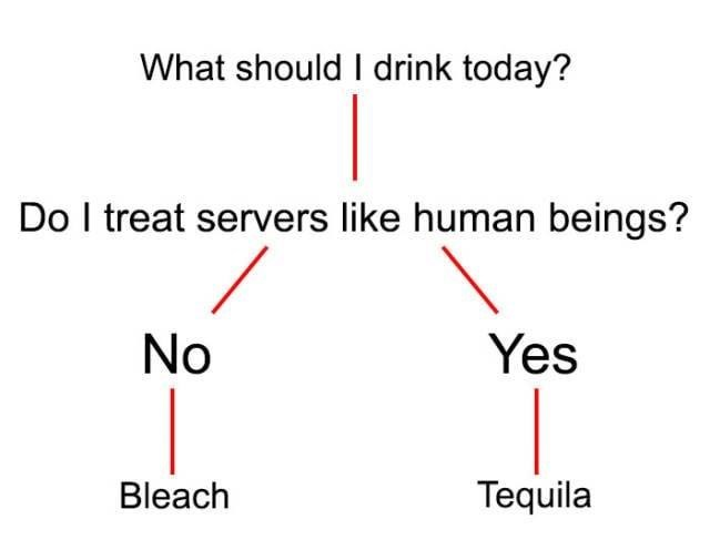 meme - Text - What should I drink today? Do I treat servers like human beings? No Yes Bleach Tequila