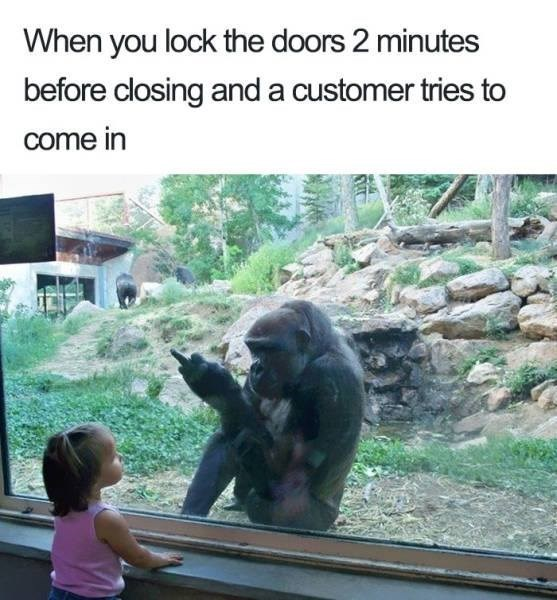 meme - Primate - When you lock the doors 2 minutes before closing and a customer tries to come in