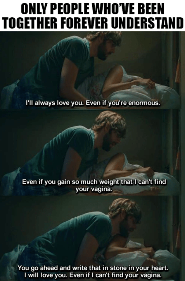 meme - Human - ONLY PEOPLE WHOVE BEEN TOGETHER FOREVER UNDERSTAND I'll always love you. Even if you're enormous. Even if you gain so much weight that I can't find your vagina You go ahead and write that in stone in your heart. I will love you. Even if I can't find your vagina