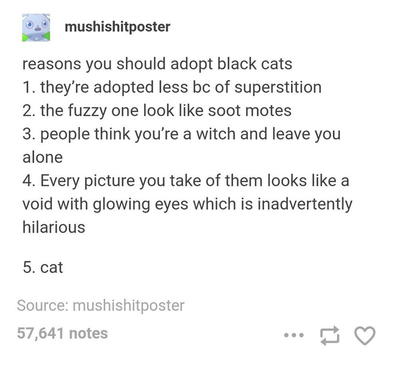 Text - mushishitposter reasons you should adopt black cats 1. they're adopted less bc of superstition 2. the fuzzy one look like soot motes 3. people think you're a witch and leave you alone 4. Every picture you take of them looks like a void with glowing eyes which is inadvertently hilarious 5. cat Source: mushishitposter 57,641 notes