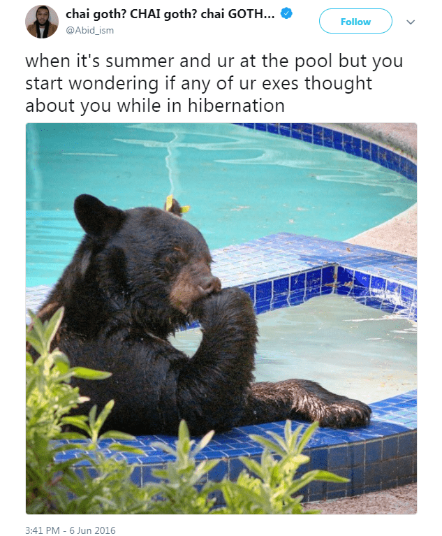 summer tweet - Vertebrate - chai goth? CHAI goth? chai GOTH... Follow @Abid_ism when it's summer and ur at the pool but you start wondering if any of ur exes thought about you while in hibernation 3:41 PM 6 Jun 2016