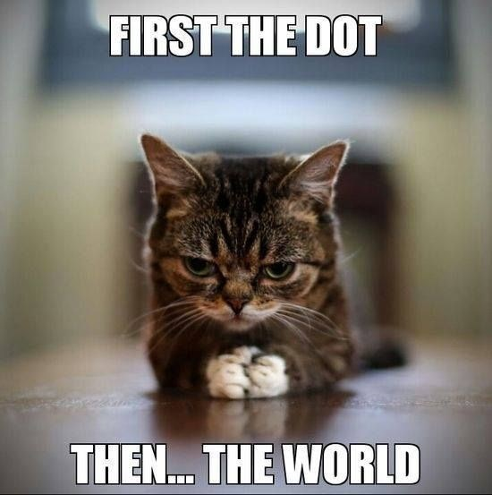 Cat - FIRST THE DOT THEN.. THE WORLD