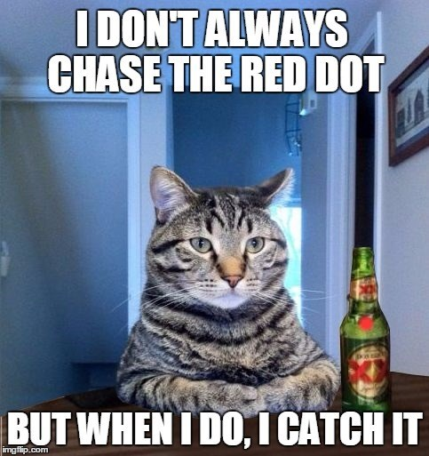 Cat - IDONTALWAYS CHASE THE RED DOT BUT WHEN I DO, I CATCH IT img flip.com