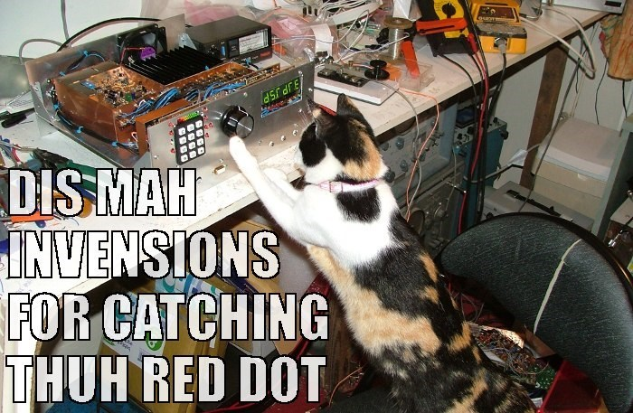 Cat - JP JSP DISMAH INVENSIONS FOR CATCHING THUH RED DOT