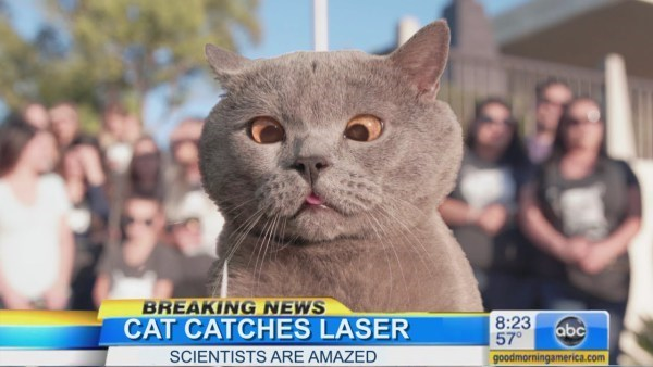 Cat - BREAKING NEWS CAT CATCHES LASER SCIENTISTS ARE AMAZED 8:23 abc 57 goodmorningamerica.com