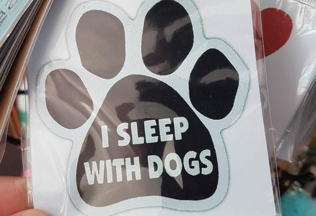 Font - ISLEEP WITH DOGS