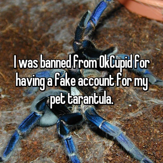 Soil - lwas banned from OkCupid for having afake account For my pet tarantula.