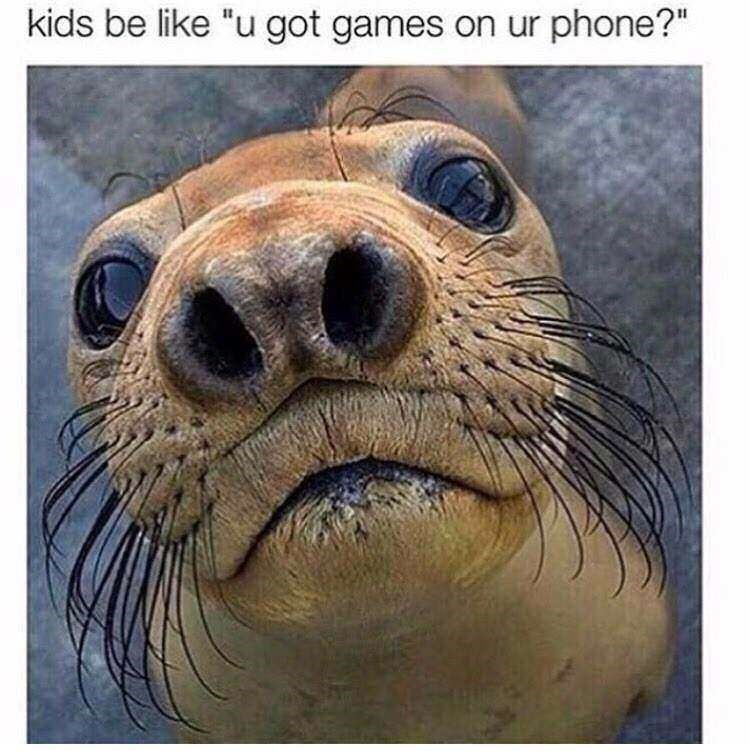 "meme - Steller sea lion - kids be like ""u got games on ur phone?"""