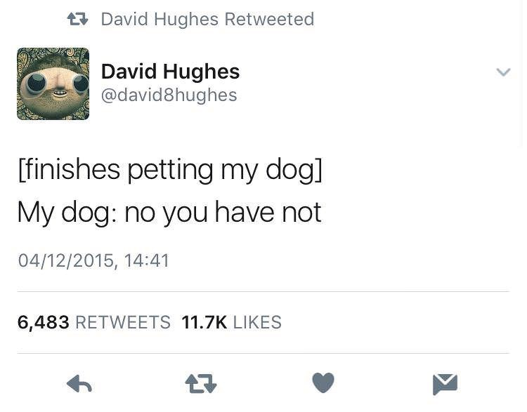 meme - Text - David Hughes Retweeted David Hughes @david8hughes [finishes petting my dogl My dog: no you have not 04/12/2015, 14:41 6,483 RETWEETS 11.7K LIKES
