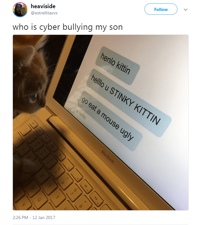 Text - Follow who is cyber bullying my son henlo kittin heaviside @estrellitaxvx helllo u STINKY KITTIN go eat a mouse ugly 4.18 PM MacBook 2:26 PM 12 Jan 2017 A 6