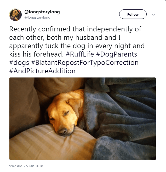 Dog - @longstorylong @longstorylong Follow Recently confirmed that independently of each other, both my husband and I apparently tuck the dog in every night and kiss his forehead. #RuffLife #DogParents #dogs #BlatantRepostForTypoCorrection #AndPictureAddition 9:42 AM -5 Jan 2018