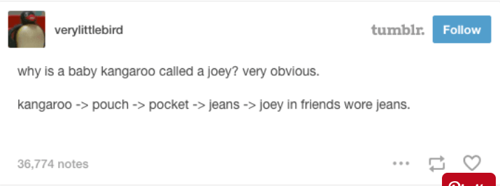 text from tumblr about where the word joey came from