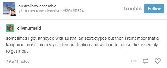 text from tumblr kangaroo broke into classroom