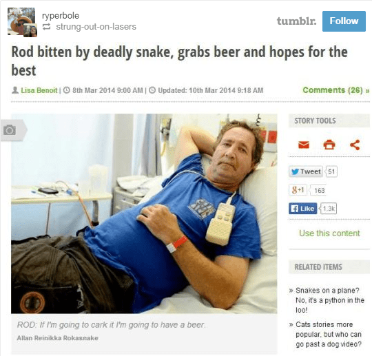 screenshot of news article about man bitten by deadly snake, grabs beer and hopes for the best