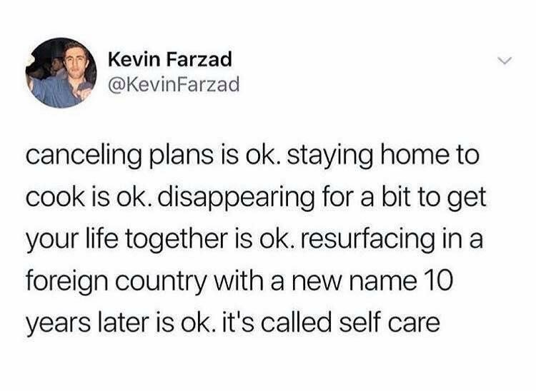 meme - Text - Kevin Farzad @KevinFarzad canceling plans is ok. staying home to cook is ok. disappearing for a bit to get your life together is ok. resurfacing in a foreign country with a new name 10 years later is ok. it's called self care