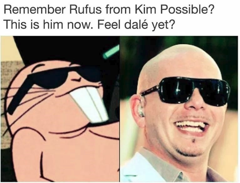Funny meme about Kimpossible, Pitbull.