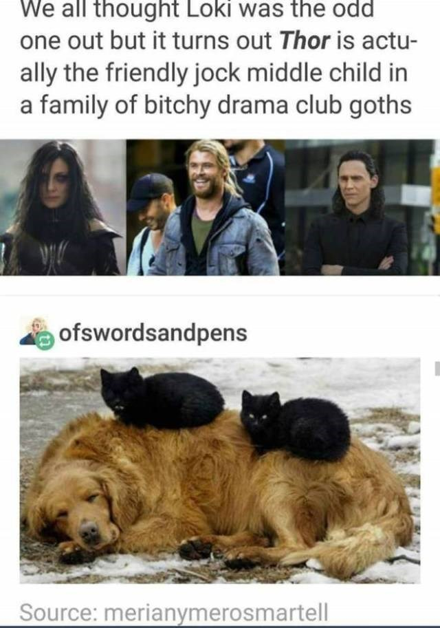 Dog - We all thought Loki was the odd one out but it turns out Thor is actu- ally the friendly jock middle child in a family of bitchy drama club goths ofswordsandpens Source: merianymerosmartell