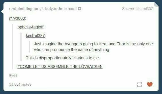 Text - earlploddington lady turiansexual l Source: kestre1337 mrv3000 ophelia-tagloff kestrel337 Just imagine the Avengers going to Ikea, and Thor is the only one who can pronounce the name of anything. This is disproportionately hilarious to me. #COME LET US ASSEMBLE THE LÖVBACKEN #yes 53,864 notes tl
