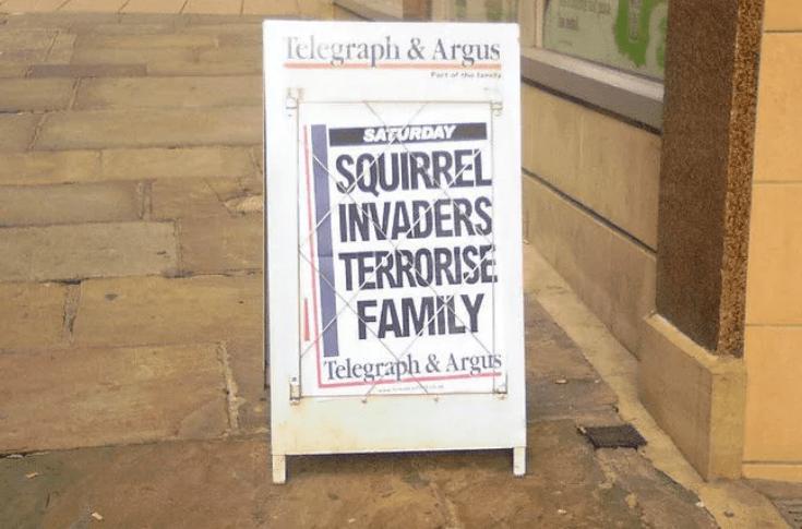 Text - Telegraph&Argus tof the taty SATURDAY SQUIRREL INVADERS TERRORISE FAMILY Telegraph& Argus