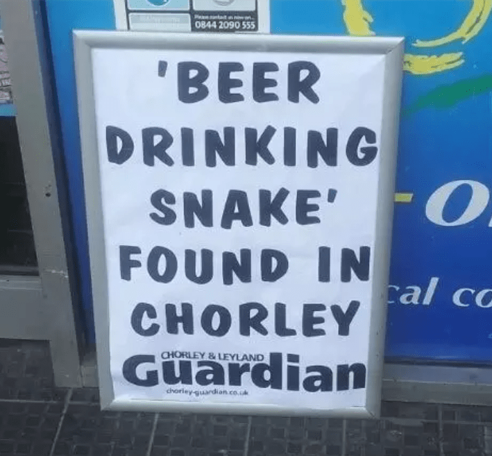 Font - 0844 2090 555 'BEER DRINKING SNAKE' O FOUND IN CHORLEY Guardian cal co CHORLEY&LEYLAND dherley-guardian.co.uk