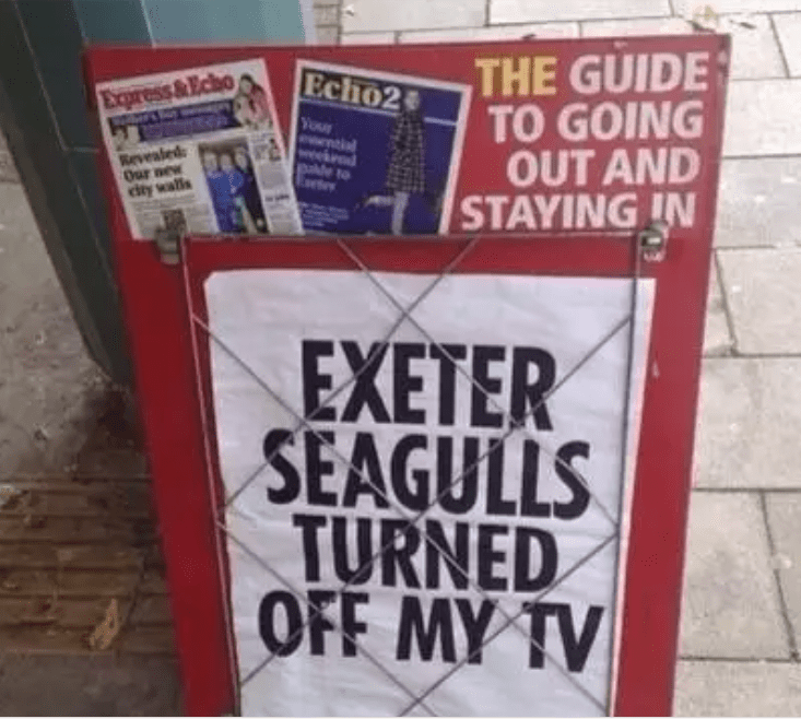 Font - THE GUIDE TO GOING OUT AND STAYING IN Echo2 Express&Echo Your ntl weekd Revealed Our new city walls deto EXETER SEAGULLS TURNED OFF MY TV