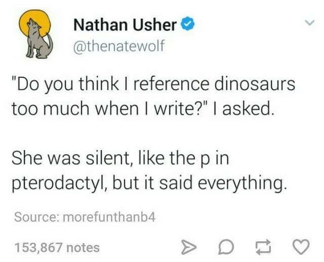"Text - Nathan Usher @thenatewolf ""Do you think I reference dinosaurs too much when I write?"" I asked. She was silent, like the p in pterodactyl, but it said everything. Source: morefunthanb4 153,867 notes A"