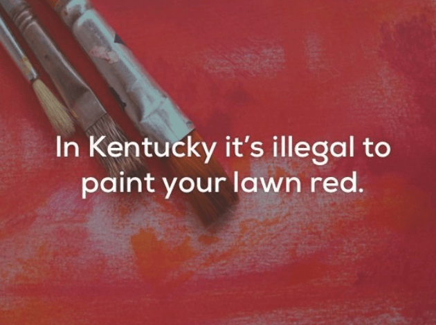 Red - In Kentucky it's illegal to paint your lawn red.